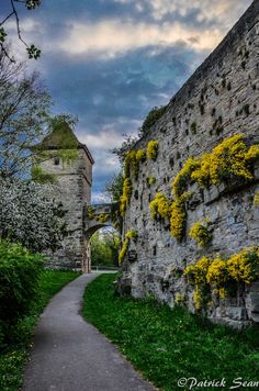 Rothenburg, Bavaria, Germany medieval town walls