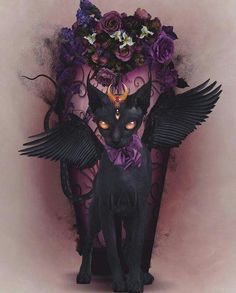 Absoulutely Adore the work of Natalie Shau 'Bastet' •°☆°• ༺💜༻•°☆°•