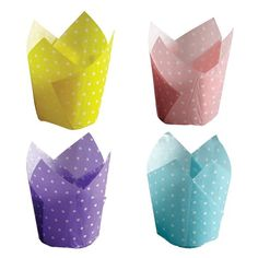 Hoffmaster 611124 Dotted Tulip Cup Cupcake Wrapper Assortment Capacity 214 Diameter x 4 Height Large 4 Packs of 125 *** Learn more by visiting the image link. (This is an affiliate link) Tulip Colors, Baking Supply Store, Icing Frosting, Wholesale Party Supplies, Blue Cups, White Tulips, Ppr, Paper Cake, Cupcake Wrappers