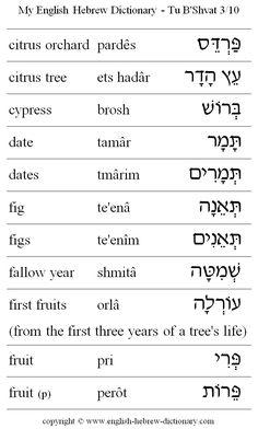 My English Hebrew Dictionary - Tu B'Shvat 3 Hebrew Writing, Biblical Hebrew, Hebrew Words, Hebrew Lexicon, Learn Hebrew Alphabet, English To Hebrew, Bible Knowledge, Bible Prayers, Vocabulary