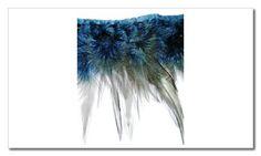 tira de plumas azul