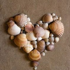Shell ideas #MySuiteSetupSweepstakes