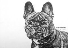 Original Custom Dog Portraits in Pen and Ink - Handmade Fine Art - Pet Drawings - Animal Art - Realistic Drawings -  Gift for Pet Lovers