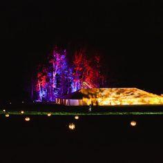 Reception lights and decor
