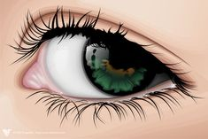 I think I would like to try to do this to a bunch of eyes. The shine on the eye itself if beautiful and really adds to the realistic features of the entire piece