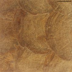 6ee1dc03 Capiz-Shell wall covering and tiles, UT1-05 - Antique Brass Natural  Materials