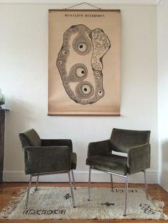 Paire de fauteuils vintage Joseph André Motte ? Années 50/60 velour kaki structure tubulaire métal chromé