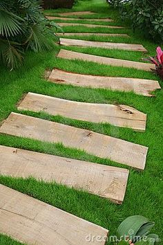 Walking path created with wooden planks Maybe across the back to the compost?
