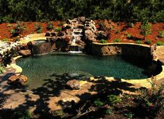 Picking the right plants and shrubs for the landscape that surrounds your natural swimming pool