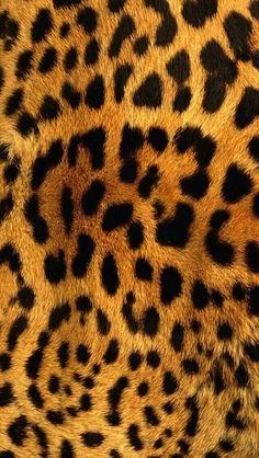 Sfondi per iphone leopardato