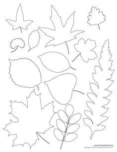leaf template Leaf Templates & Leaf Coloring Pages for Kids Fall Leaf Template, Leaf Template Printable, Leaf Printables, Printable Leaves, Flower Template, Crown Template, Heart Template, Butterfly Template, String Art Templates