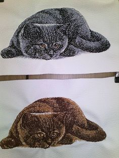 British Cat free photo embroidery design - Animals photo stitch embroidery - Gallery - Machine embroidery forum