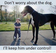 The Dog Whisperer  http://www.funnyalltime.com/