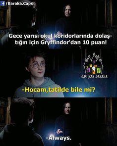 Always Harry Potter, Harry Potter Jokes, Harry Potter Pictures, Harry Potter Film, Comedy Pictures, Funny Pictures, Slytherin, Hogwarts, Comedy Zone