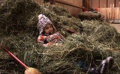 Die Kinder der Bauernhofspielgruppe haben allerhand Abwechslung auf dem Bauernhof in Horgen.