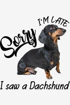 Dachshund Quotes, Funny Dachshund, Mini Dachshund, Dachshund Puppies, Dachshunds, Weenie Dogs, Doggies, Dog Nutrition, Whimsical Art