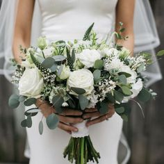 Excited to share the latest addition to my shop: Silver Dollar Eucalyptus - 1 lb Fresh Organic Sprigs - Wedding Greenery Bridal Bouquets Wedding Centerpieces Wedding Runners Spring Wedding decorations classy Your place to buy and sell all things handmade Simple Wedding Bouquets, Wedding Flower Arrangements, Bride Bouquets, Flower Bouquet Wedding, Simple Weddings, Floral Wedding, Wedding Greenery, Floral Arrangements, Purple Bouquets