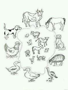 Zvířata a jejich mláďata Farm Activities, Animal Activities, Preschool Themes, Preschool Worksheets, Educational Activities, Farm Animal Coloring Pages, Colouring Pages, Farm Unit, Animal Worksheets