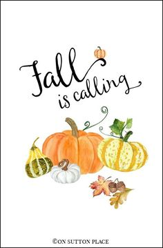 Fall Watercolor Printables | Fall is Calling | Free DIY Wall Art: Use for seasonal decor, crafts, fall banners, cards, screensavers & more. Easy to download and print. #freeprintable