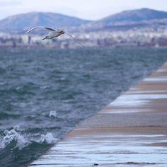 Thessaloniki, Railroad Tracks, Greece, Mountains, Places, Nature, Travel, Greece Country, Naturaleza