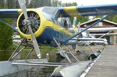 Blue and Gold DeHavilland Beaver has been the signature plane for Sapawe Air and Kashabowie Outposts.  Fly in Fishing in Ontario, Canada.