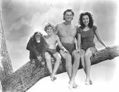 Cheetah, Johnny Sheffield as Boy, Johnny Weissmuller as Tarzan and Maureen O'Sullivan as Jane
