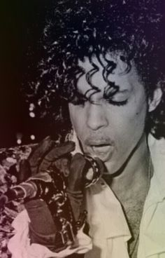Prince ● Perfection