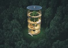 Treehouses for Grown-Ups Prove You're Never Too Old Treetop Escapes