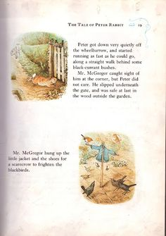 I think I want to make a Peter Rabbit scarecrow for my garden!