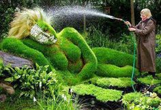 Grass Lady in Park side