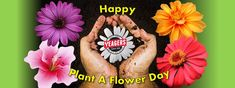 Happy Plant A Flower Day! Come by Yeagers and let us help you celebrate the day!