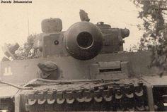 """Tiger I SS Panzergrenadierdivision """"Das Reich"""""""