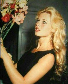 Brigitte Bardot Photos of Bridgitte Bardot, Catherine Deneuve, Sophia Loren, Timeless Beauty, Classic Beauty, Hollywood Glamour, Old Hollywood, Marie Christine Barrault, Jeanne Moreau