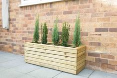 Our Linear Planters have a contemporary style and are the perfect size for a variety of different plants such as flowering shrubs, miniature firs, or box.