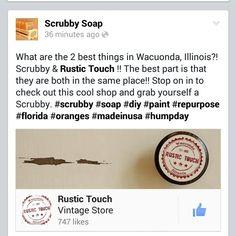 #Scrubby #madeinusa #florida #citrus #orange #lemon #paint #Illinois #brushcleaner #rustictouch