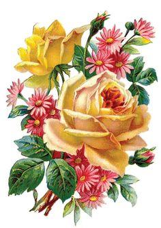 Scraps - Victorian Die Cut - Victorian Scrap - Tube Victorienne - Glansbilleder - Plaatjes: Rose with flowers