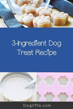 If you're looking for a unique reward to use in training sessions, you'll love our homemade gummy dog training treat recipe! Check it out! Dog Treat Recipes, Dog Food Recipes, 3 Ingredient Dog Treats, Dog Training Treats, Training Tips, Beef Gelatin, Canned Dog Food, Healthy Herbs, Best Dog Food