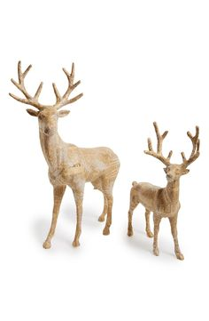 Cute deer decorations for Christmas.