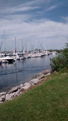 port credit ontario