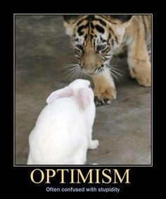 Demotivational poster memes are great for a lot of things. They can make you laugh, feel uncomfortable — these funny quotes and quips are super relatable and just a good use of your down time. Look to these 20 best demotivational memes for a good laugh. Funny Animal Memes, Funny Jokes, Funny Animals, Funny Gifs, Teamwork Funny, Humor English, Laugh Track, Good Morning Funny, Demotivational Posters