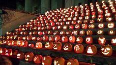 Pumpkin Mania at Transylvania University the week before Halloween!
