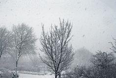 Winter 02