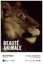 Beauté animale - Grand Palais  21 mars - 16 juillet