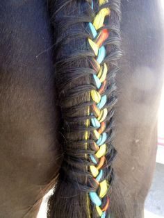 30 Amazing Horse Tail Braids Ideas to make Your Friends Jealous - Tail and Fur Horse Mane, Horse Girl, Horse Horse, Horse Hair Braiding, Tail Braids, Horse Costumes, Horse Grooming, Clydesdale, Horse Pictures