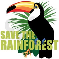 Save the Rainforest....................Visit: https://www.facebook.com/stayingpositiveu http://www.pinterest.com/positiveoutlook/