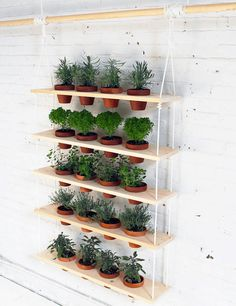 You'll save major money + enjoy tasty treats by making this DIY hanging herb garden.