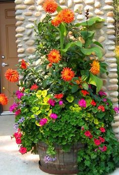 Orange dahlia, Indian Dune geranium, pink geranium, rose petunia, heliotrope, ivy, canna