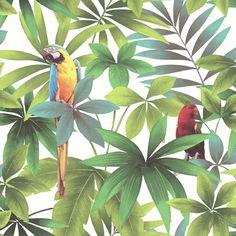 papegaai vogel behang Kaleidoscope j929-14