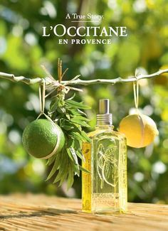 l'occitane provence france - ค้นหาด้วย Google