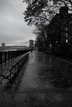 Brooklyn Heights Promenade  (Photo credit: Nicole Franzen)